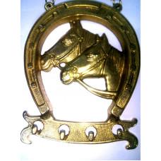 Ключица лошадь